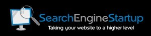 searchenginestartup